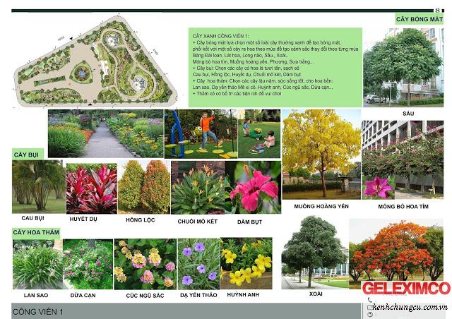 Các loại hoa tại The Green Daisy