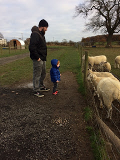 Daddy and son looking at sheep