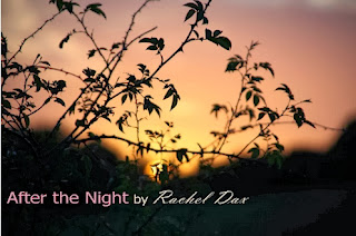Good Lesbian Books: Book Review: After The Night by Rachel Dax