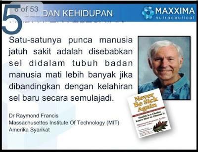 CELLMAXX INDONESIA