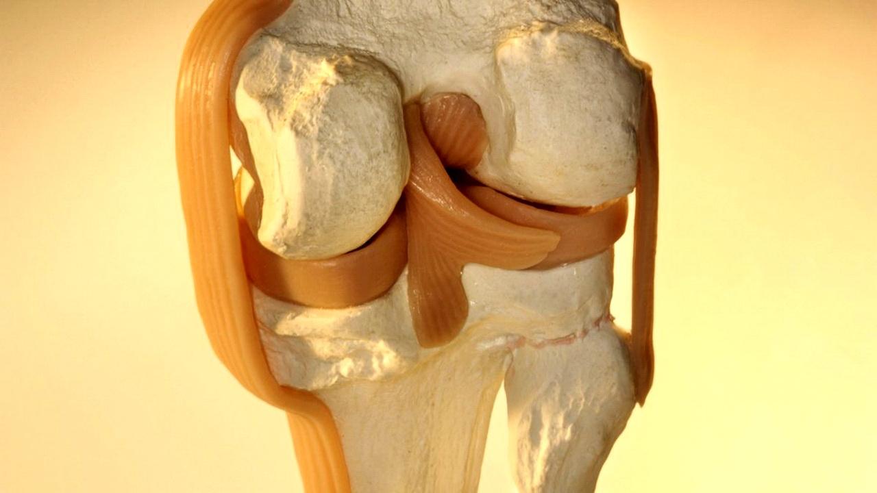 Bebida para regenerar los tendones y los ligamentos de las rodillas ...