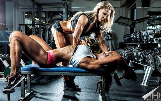 Beginners Guide Bodybuilding
