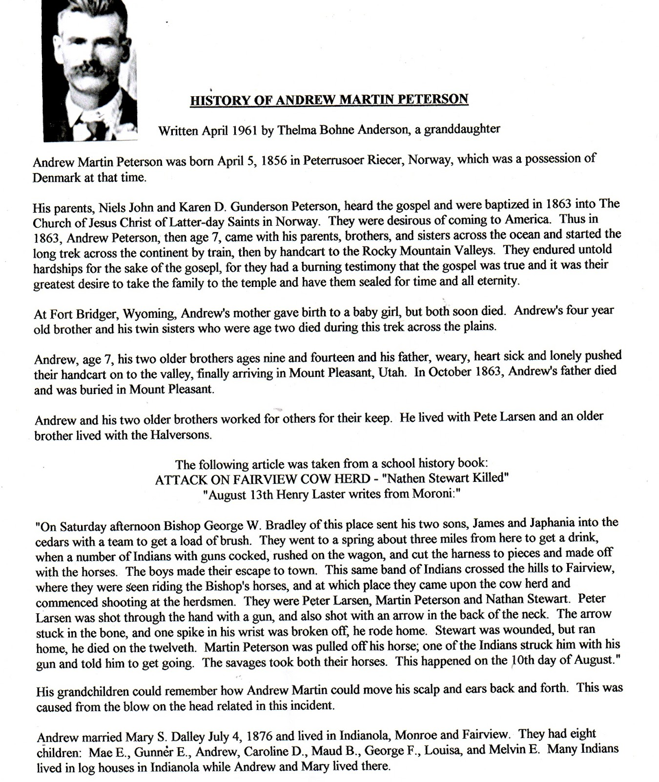 Mt  Pleasant Pioneer : History of Andrew Martin Peterson