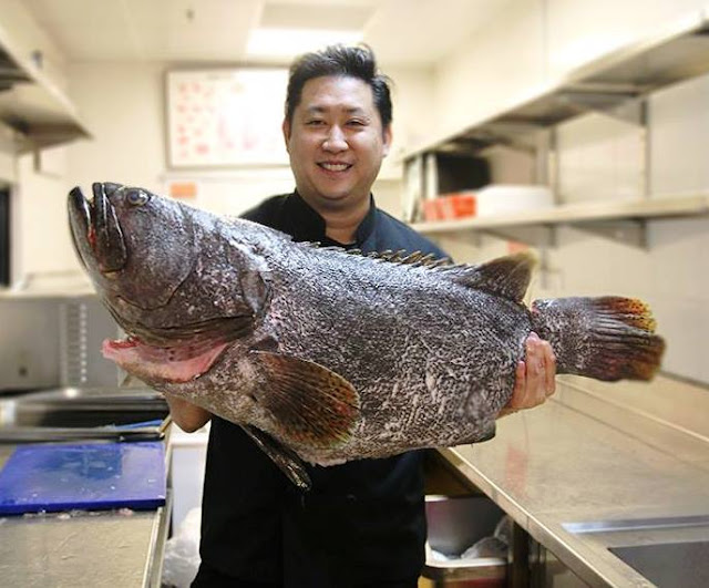 Executive Chef Eric Siew With Goliath Of The Sea