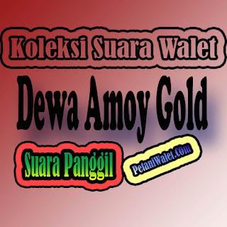 Suara Panggil Dewa Amoy Gold