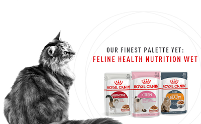 Royal Canin Cat Food Free Sample Giveaway Promo