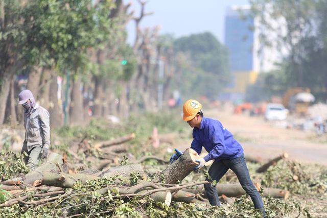 Hoàn thành việc chặt cây xanh tại Phạm Văn Đồng