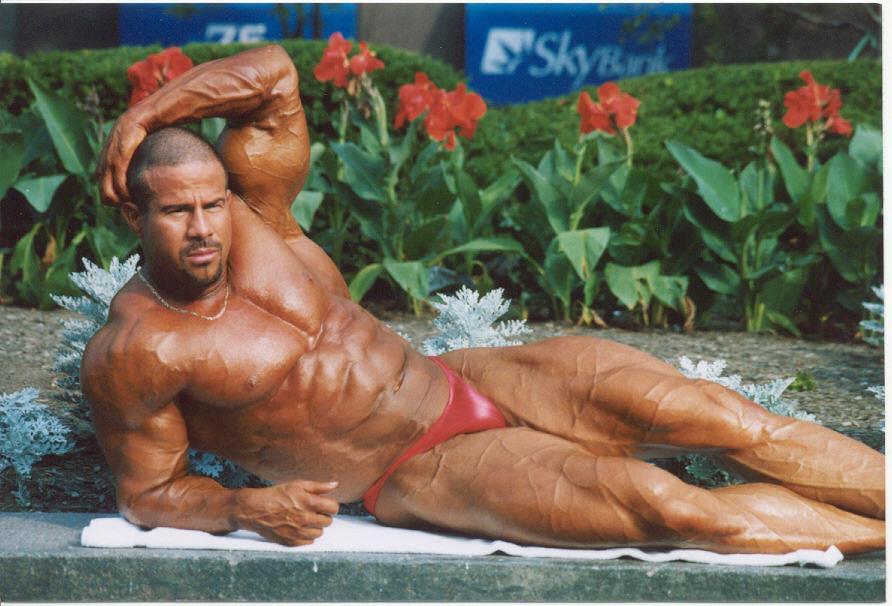 Resultado de imagem para David Pulcinella bodybuilder