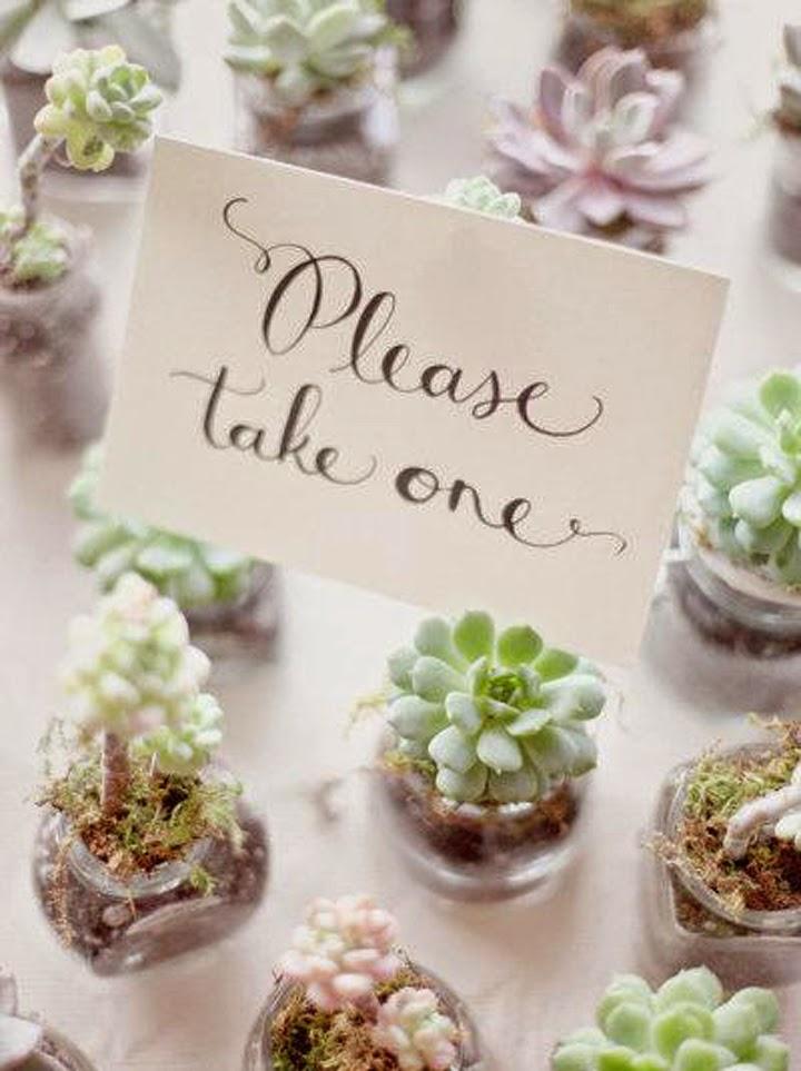 Diy centros de mesa con cactus y suculentas tr s studio for Decoracion con plantas suculentas