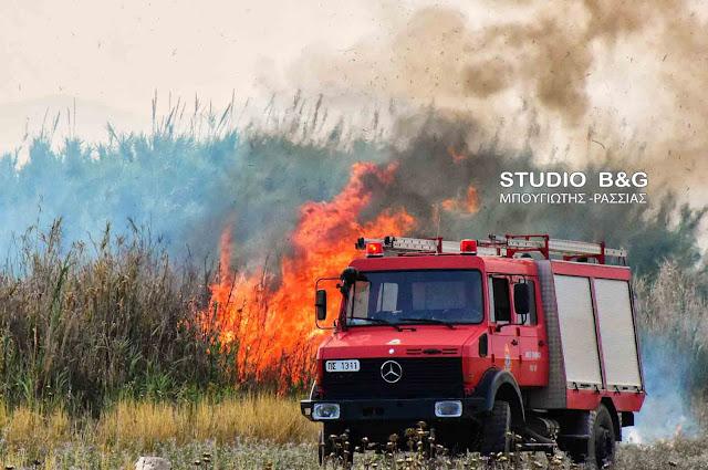 Πυρκαγιά στη Χούνη Αργολίδας