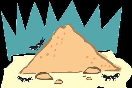 8 Fakta Menarik Seputar Binatang Semut