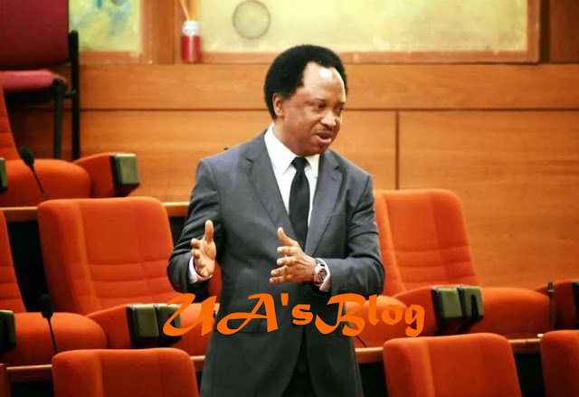 APC national convention: Shehu Sani reacts to Oshiomhole's emergence, laments Oyegun's tenure