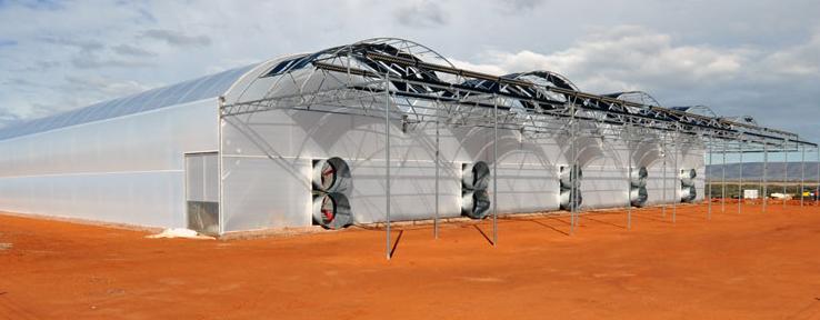 Seawater Greenhouses