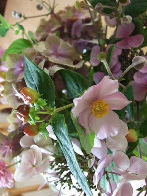 augustus-tuin-bloemen 1