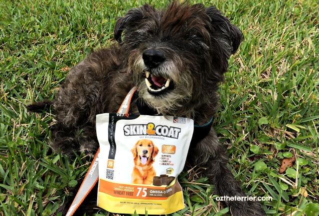 Oz VetIQ Skin & Coat Omega-3 Chews for Dogs