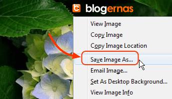 Cara Kompres Gambar di Situs JPEG Optimizer