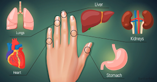 Your Fingers Are Tied To Your Organs, Cure Your Diseases With This Japanese Method