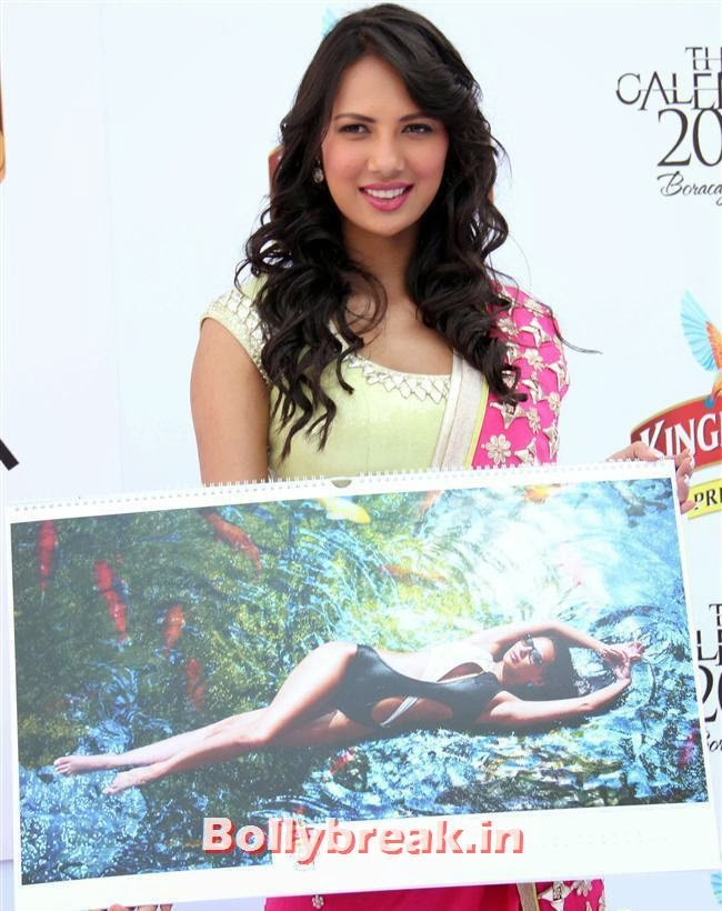 Rochelle Maria Rao, Kingfisher Calendar 2014 Bikini Models at Calendar Launch