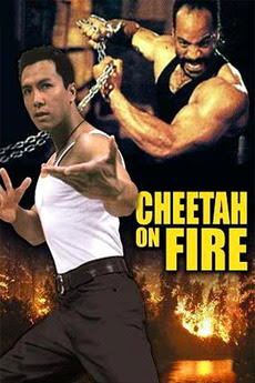 Cheetah On Fire (1992) UNRATED Dual Audio Hindi 720p WEB-DL 900MB
