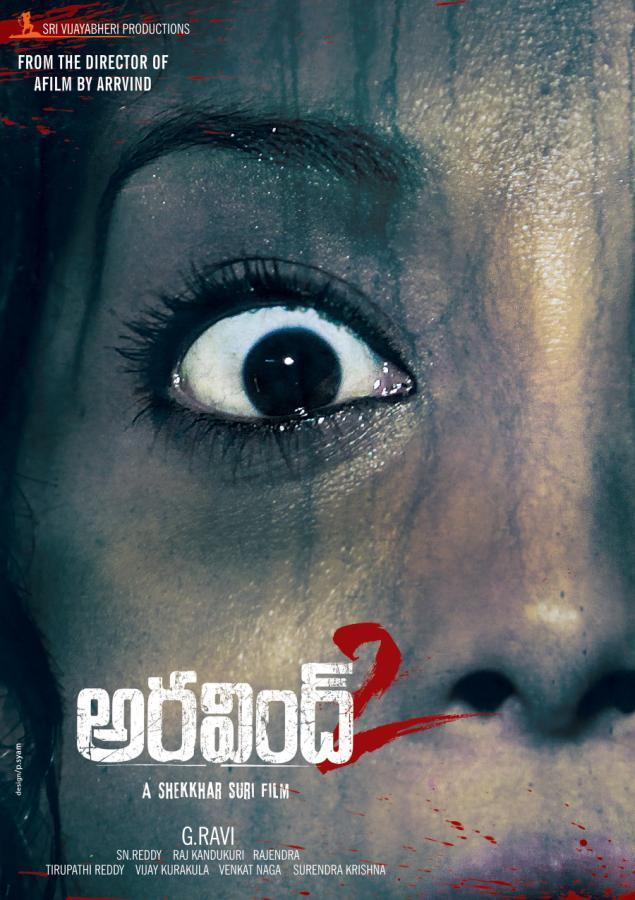 Aravind 2 (2013) Dual Audio 720p UNCUT HDRip Hindi 1.2GB Download