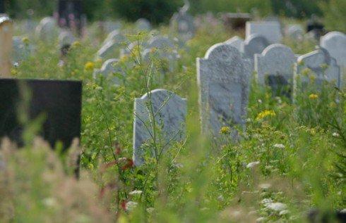 Tega, Anak Ini Biarkan Orangtuanya Tidur di Kuburan