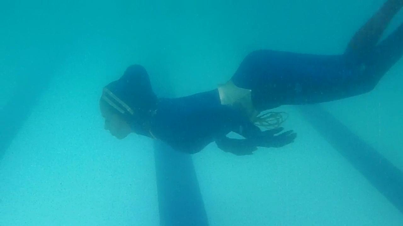 Wonder Woman Costumes Wonder Woman Underwater - Blue -7089