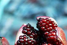 فوائد الرمان  benefits of pomegranate   يقوى الغريزه الجنسيه وأهميتة لصحة الانسان ,
