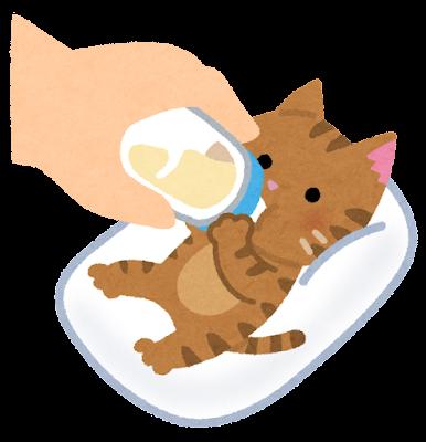 哺乳瓶で子猫にミルクを飲ませているイラスト