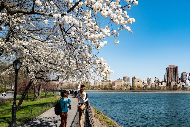 8 faits étonnants à connaître à propos de New York