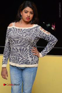 Actress Sridevi Stills in Jeans at No 1 Hero Rajendra Press Meet  0064.JPG