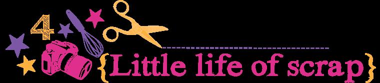 Little Life of Scrap