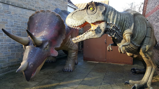 Going on a Dorset Dinosaur Adventure