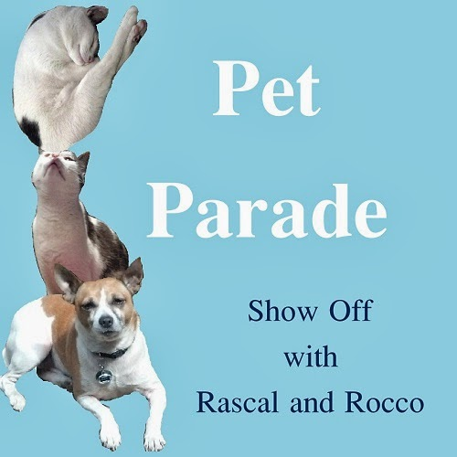 Pet Parade- Animals are taking over. #PetBloggers grow and share with us!
