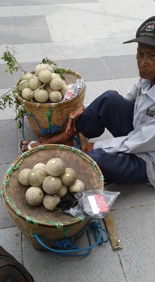 kakek jual buah kawista surabaya
