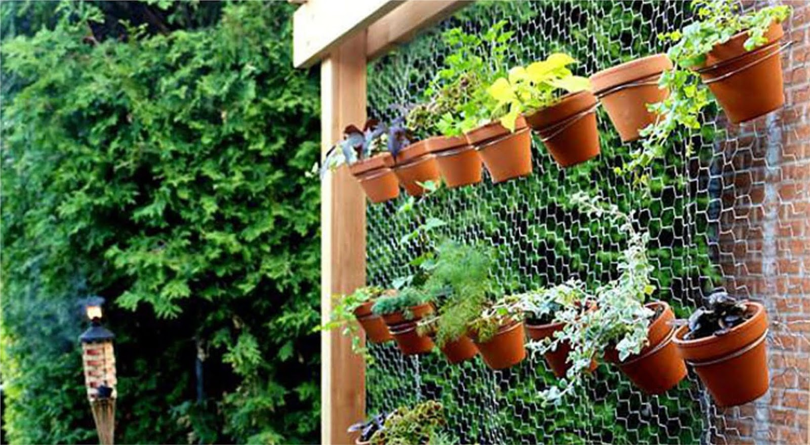 Airy Garden Backdrop