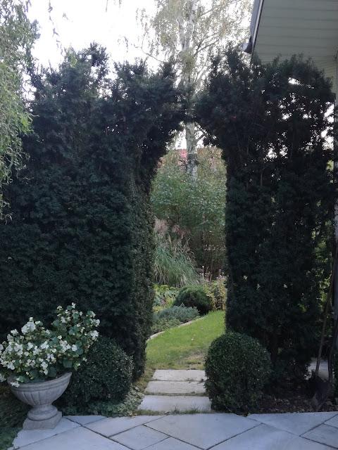 ogród Tamaryszka