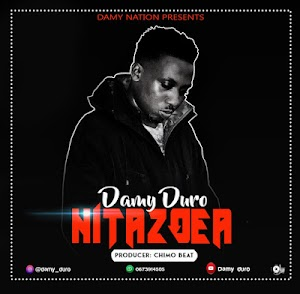 Download Audio | Damy Duro - Nitazoea