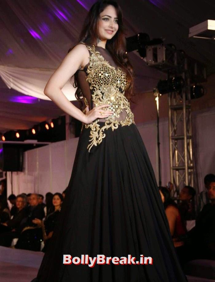 Zoya Afroz, Ex Bigg Boss Contestants at Welingkar's Tribute Fashion Show 2014