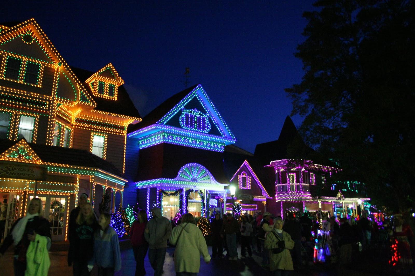 Baltimore Zoo Christmas Lights