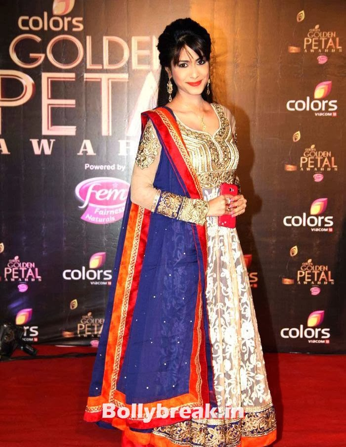 Golden Petal Awards 2013, Colors Golden Petal Awards Dec 2013 Photos