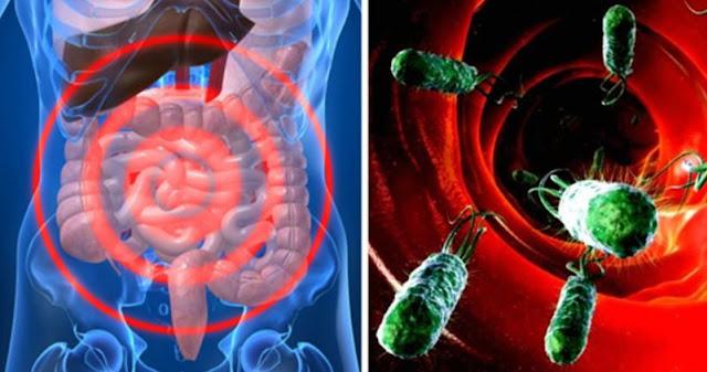 functionarea rea a intestinelor te imbolnaveste