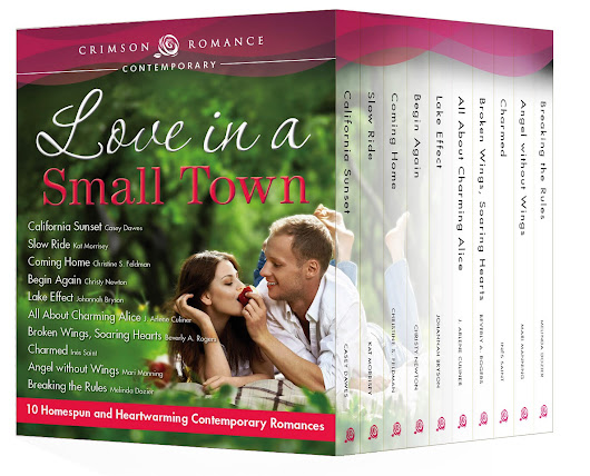 Love In A Small Town Release Day Blitz!