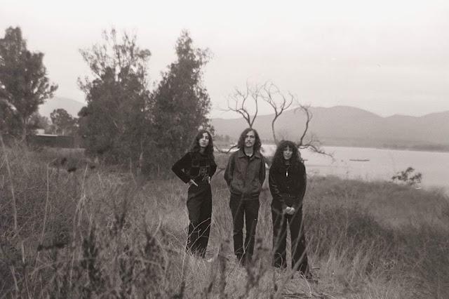 Mint Field, nueva música