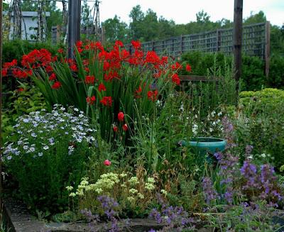 Roche Fleurie Garden