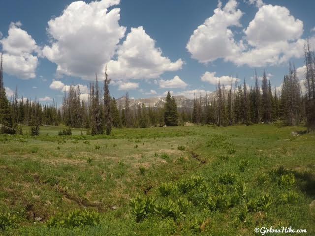 Hiking the Fehr Lake Trail, Uintas