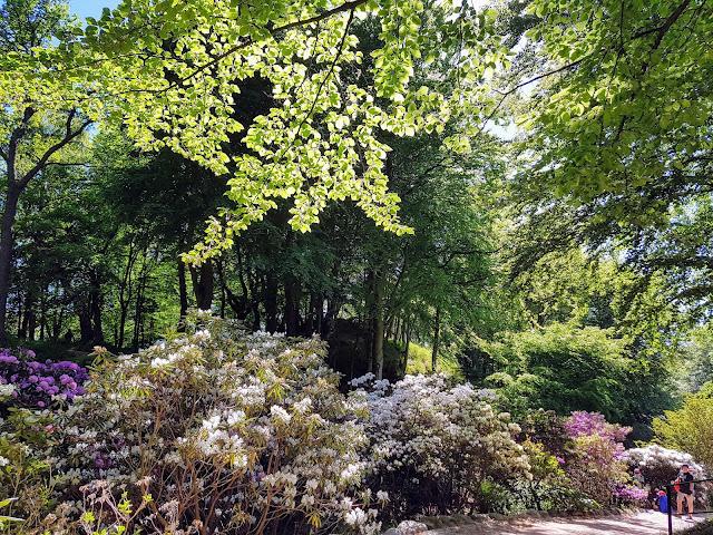 Vackraste slottsträdgård i Skåne