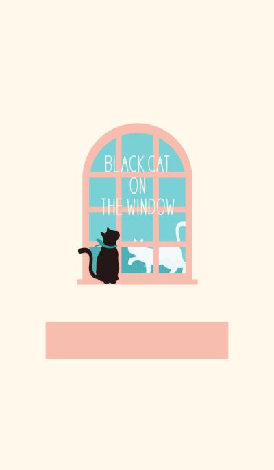 Black cat on the window