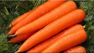 gambar buah wortel
