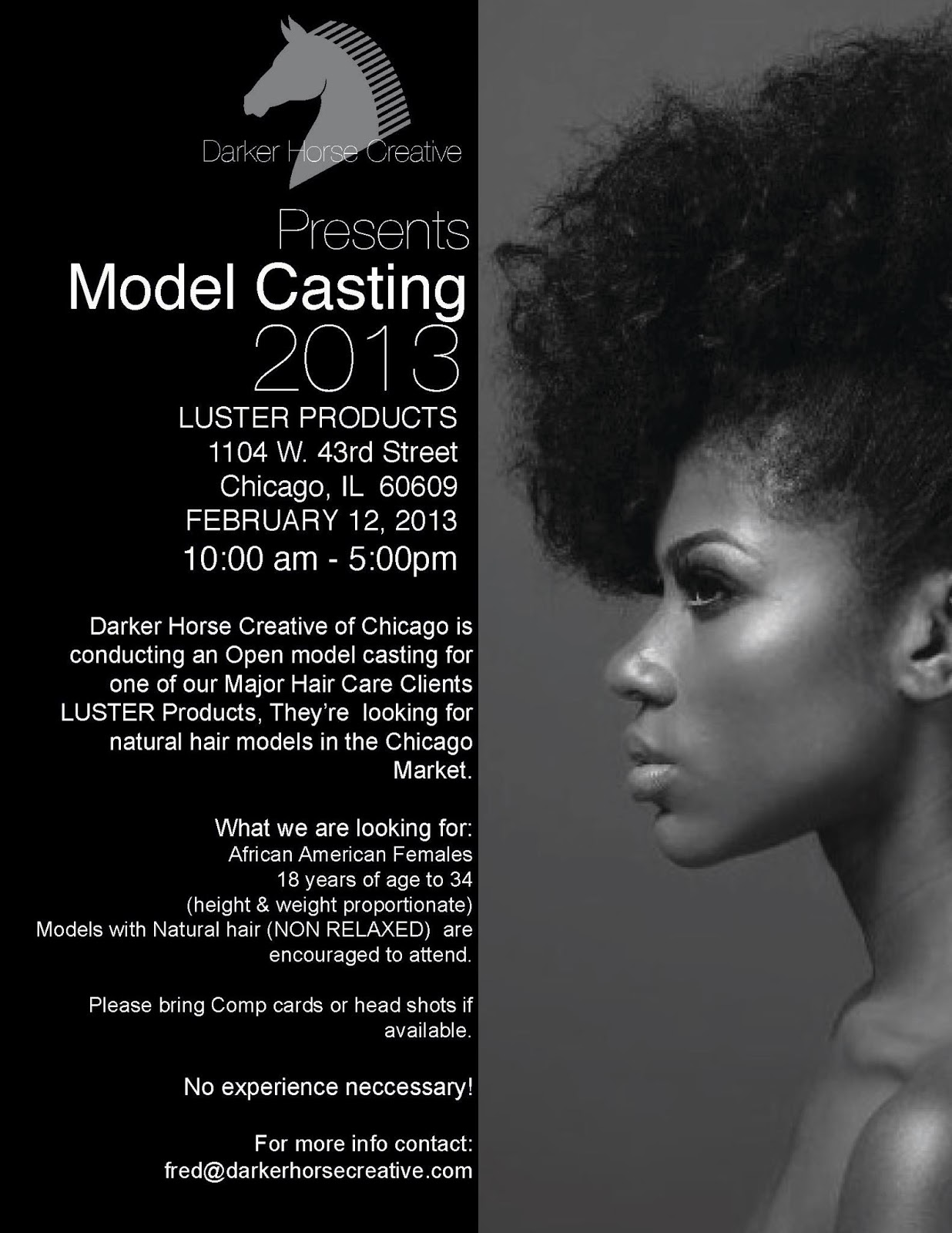 Model Casting: Natural Hair Models Wanted | amorous theorist