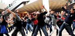 Chorégraphe de Flashmob